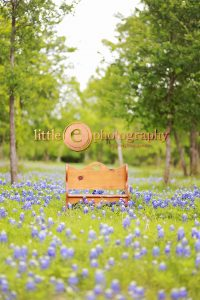 © Little E Photography | Christine Anne Peirce Coleman | Fort Worth Photographer